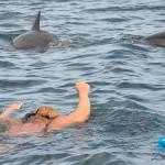 2.-Swim-with-dolphins